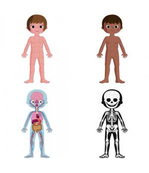 Puzzle Ľudské telo Janod