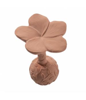 Hrkálka kvetinka Plumeria
