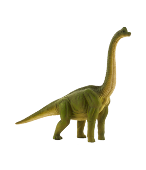 Brachiosaurus Animal Planet