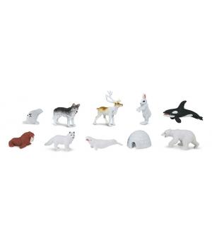Arktída tuba Safari Ltd.