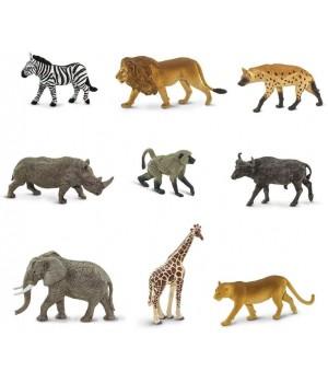 Zvieratá Južnej Afriky