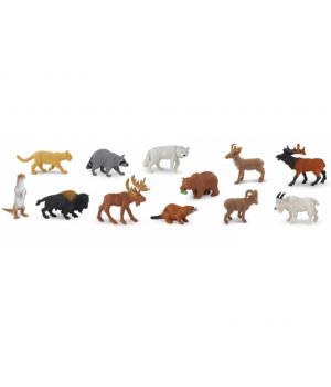 Zvieratá Severnej Ameriky...